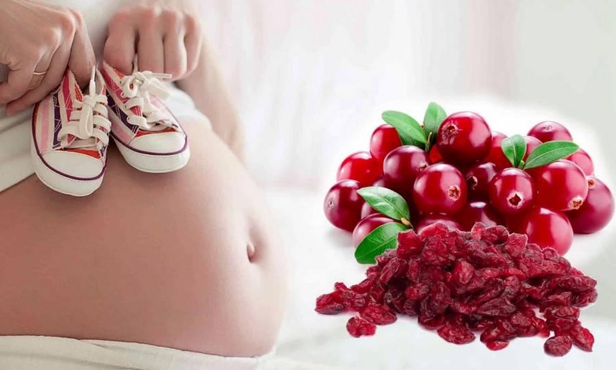 Польза и вред вегетарианства во время беременности