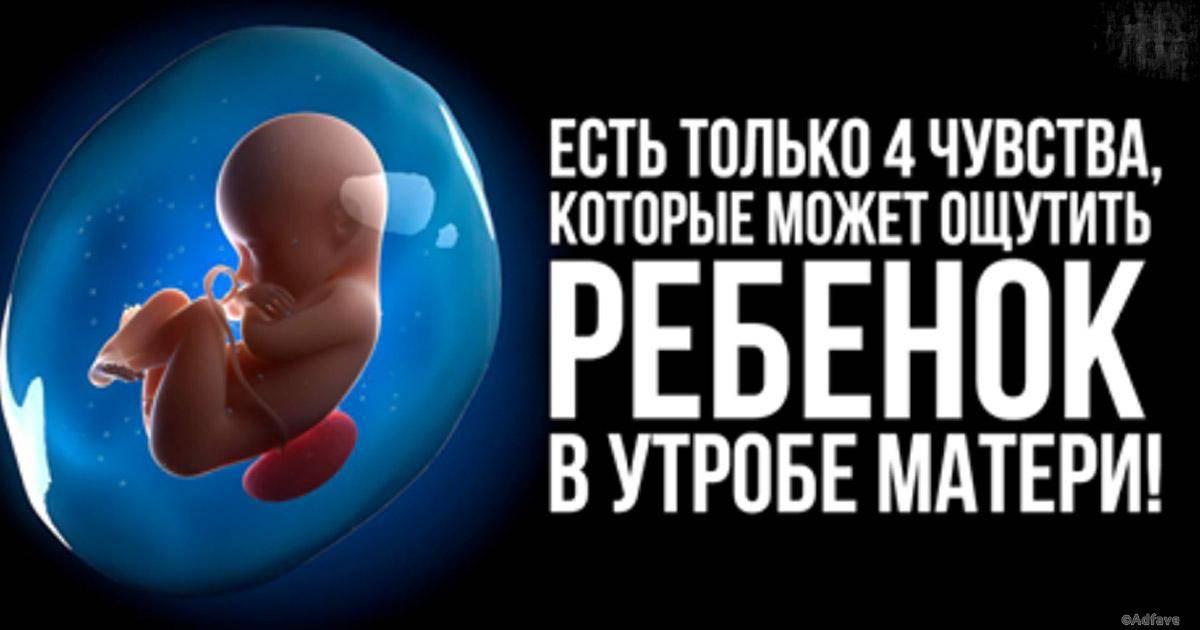 Внутриматочная терапия: заболевания плода, которые можно лечить в утробе матери   аборт в спб