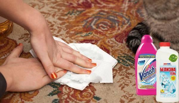Как убрать запах мочи с ковра: эффективные средства и методы