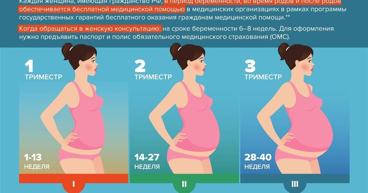 Узи при  беременности в третьем триместре