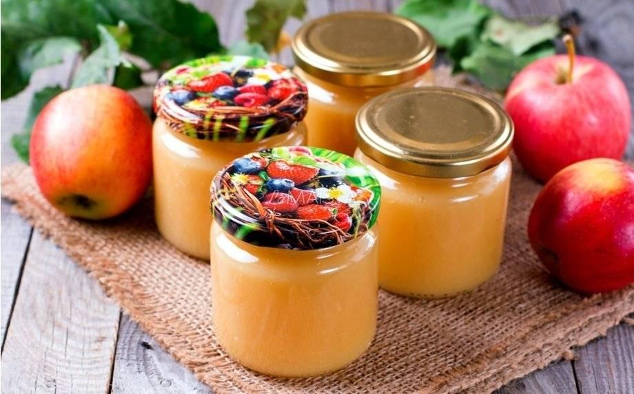 Яблочное пюре – 7 простых рецептов приготовления на зиму в домашних условиях