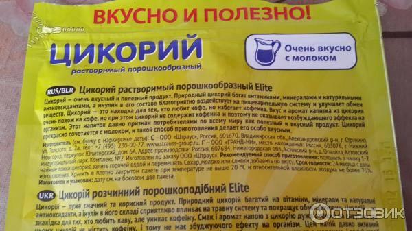 Цикорий: полезные лечебные свойства и противопоказания