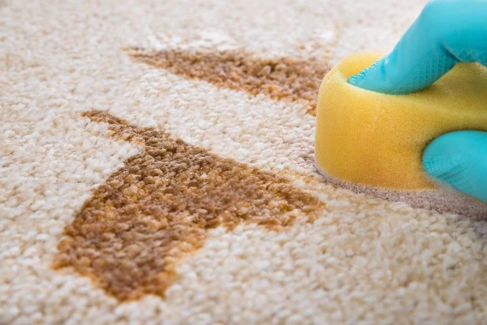 Как убрать запах с ковра в домашних условиях (от пива, рвоты и т.д.): как почистить, чтобы больше не было неприятных ароматов?