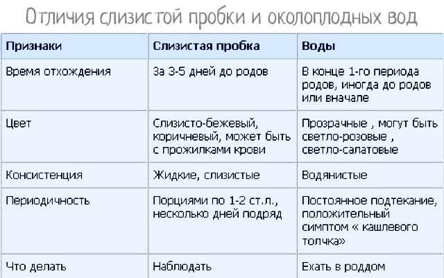 40 неделя беременности: что происходит с малышом и мамой, предвестники родов у первородящихи повторнородящих — медицинский женский центр в москве