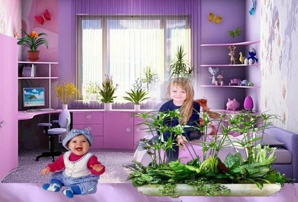 10 самых популярных комнатных цветов для детской комнаты: какие можно деражать, какие полезны, а какие опасны