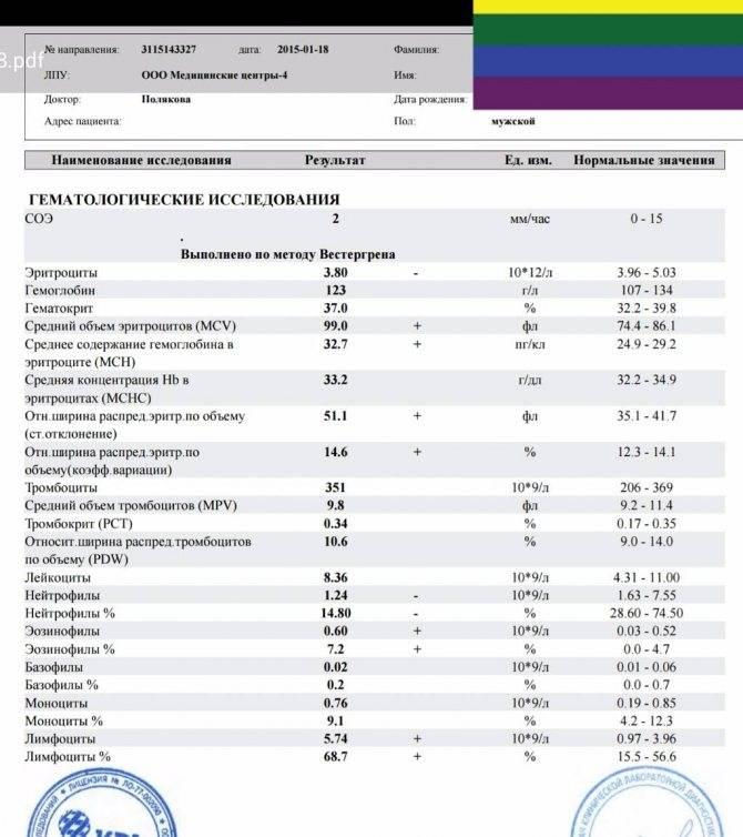 Как изменяются показатели в общем клиническом анализе крови при аллергии?