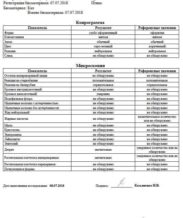 Анализ кала: результаты анализа копрограммы
