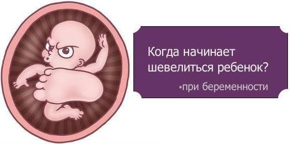 Когда можно почувствовать первое шевеление плода при второй беременности?