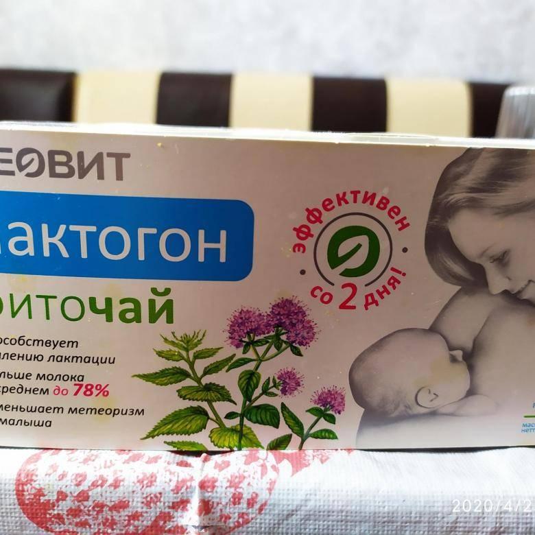 Польза и вред мяты при грудном вскармливании. практические рекомендации мамам малышей
