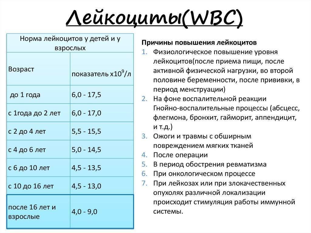 Лейкоциты в кале у грудничка и ребенка старше: повышенные, норма