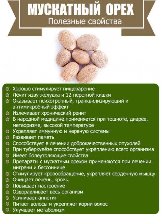 Черемша: вред и польза | dietology.pro