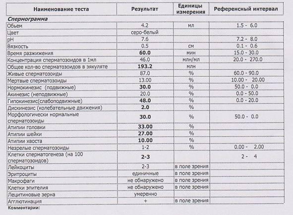 Эякулят - микроскопическое исследование
