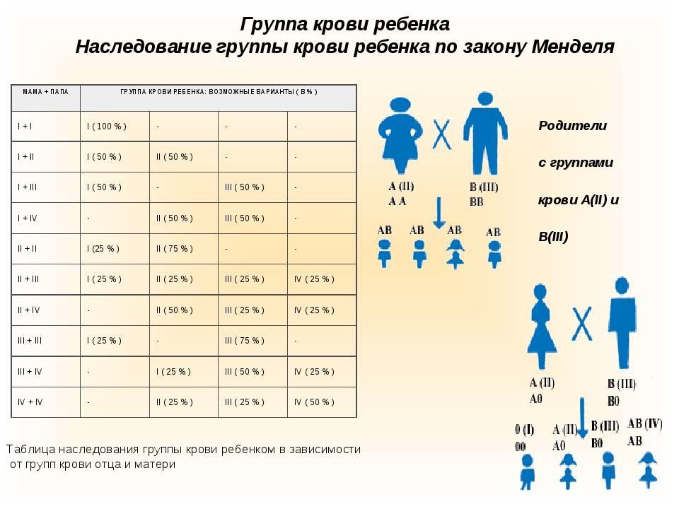 Группы крови человека: чем отличаются и почему их нельзя смешивать - hi-news.ru