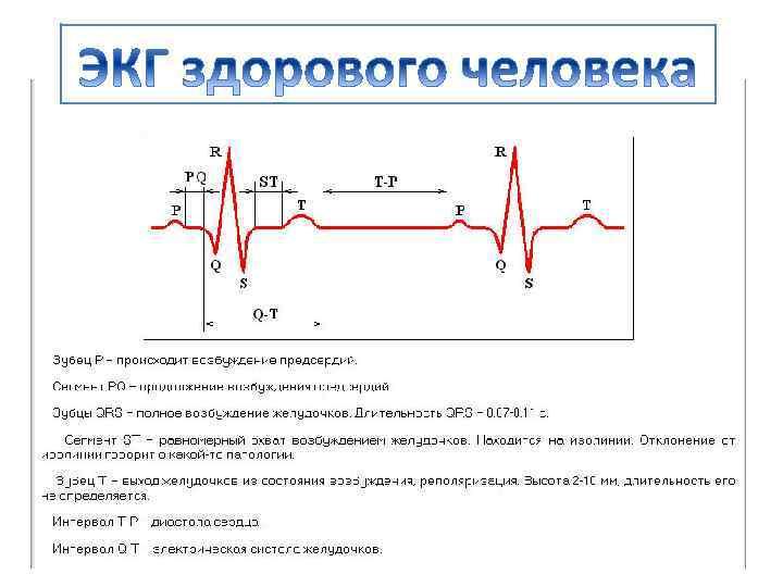 Эхокардиография сердца (эхо-кг, узи сердца)