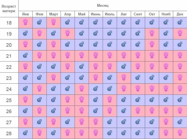 На каком месяце можно достоверно определить пол ребенка