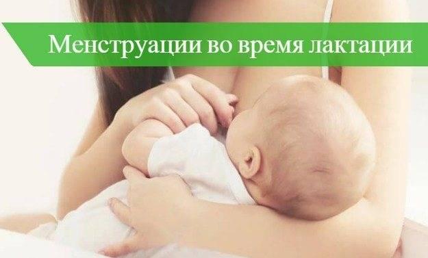 Когда начинаются месячные после родов при лактации и без нее
