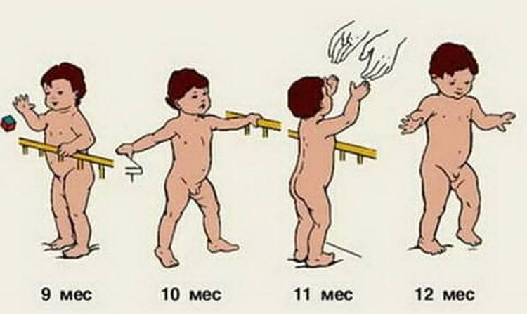 Когда ребенок начинает ползать: поэтапное развитие новорожденных, двигательные навыки девочек и мальчиков