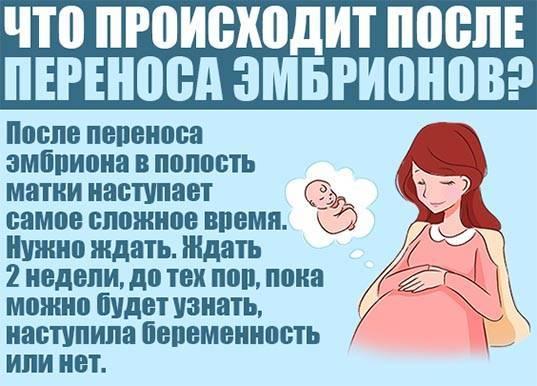 Физиотерапия перед эко  - статья репродуктивного центра «за рождение»