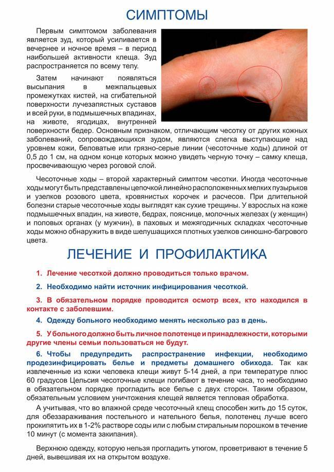 Лечение цистита при беременности