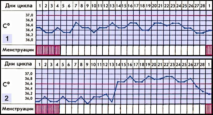 """Тонкий эндометрий – фактор бесплодия и неэффективности эко - семейный медицинский центр """"лейб медик"""""""