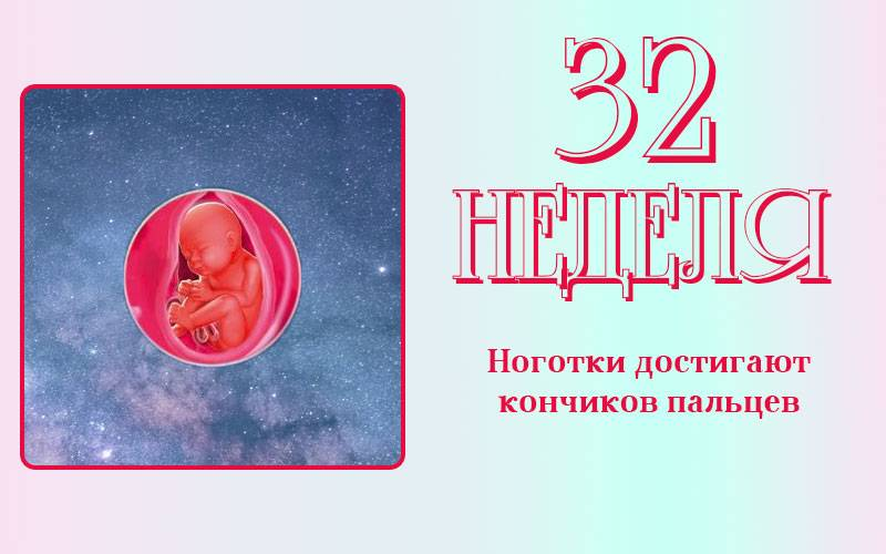 32 неделя беременности. календарь беременности