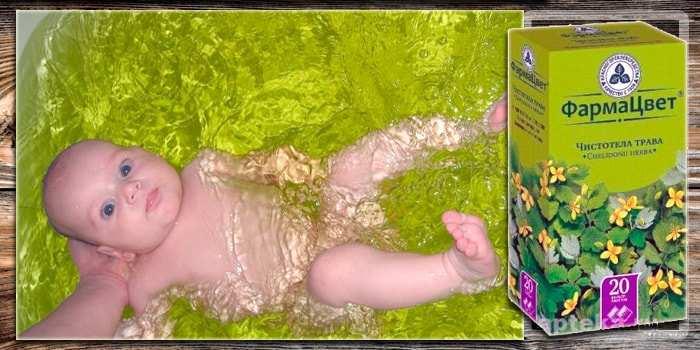Череда: целебная трава