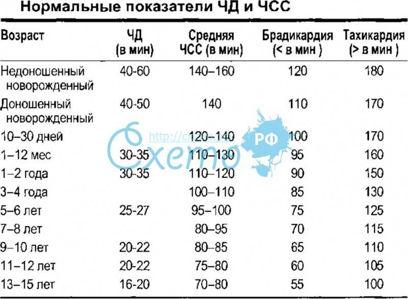 Частота пульса и дыхания у детей: норма по возрастам, таблица