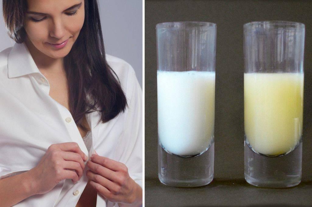 Динамика изменения состава грудного молока в процессе лактации