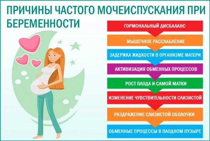 Частое мочеиспускание у беременной: лечение частого мочеиспускания у беременной, прием уролога в москве