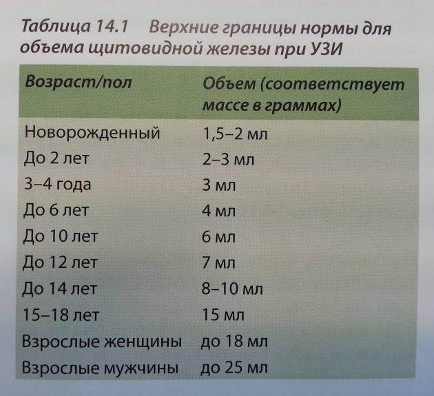 Объем щитовидной железы у детей и взрослых - диагностер