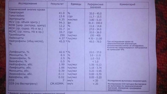 Что такое гематокрит в анализе крови у новорожденного