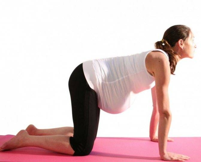 Коленно-локтевое положение при беременности: фото и какие позы можно применять, польза дренажной позиции