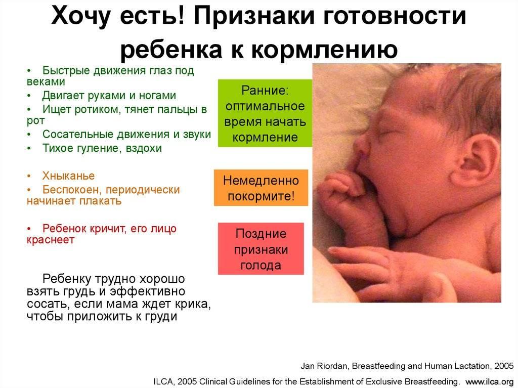 Как понять, хватает ли грудного молока ребенку?