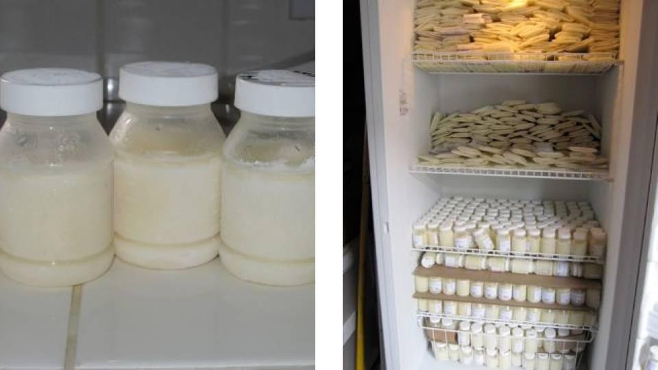 Заморозка грудного молока: можно ли хранить молоко таким образом ? как замораживать и размораживать грудное молоко