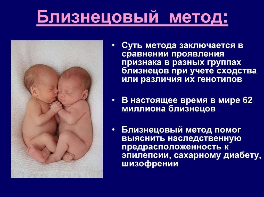 Выделять, не разделяя... рекомендации родителям по воспитанию близнецов от года до трех.