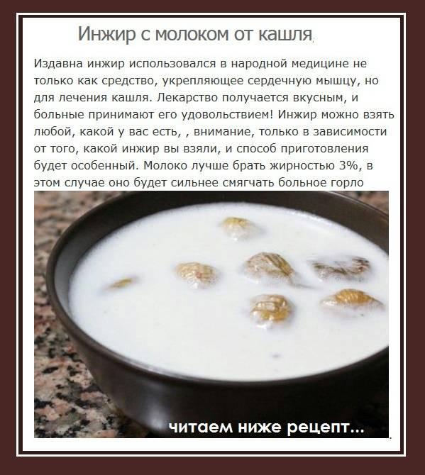 Как приготовить инжир с молоком от кашля: варим сладкую микстуру для взрослых и детей