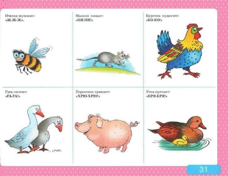 Логопедические занятия и упражнения: развиваем правильную речь ребенка