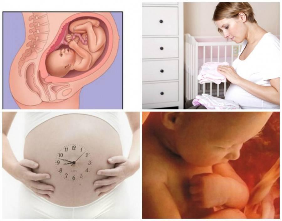 Подготовка к родам: предвестники родов. что происходит перед родами?