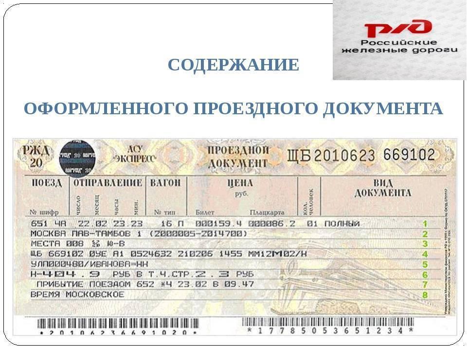 Детский билет на поезд: до какого возраста