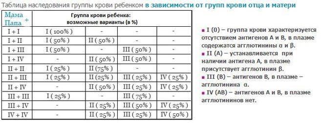 Группа крови у ребенка от родителей: таблица, расчет