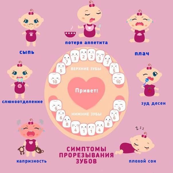 Когда режутся первые зубы у младенцев, во сколько месяцев: схема и последовательность   konstruktor-diety.ru