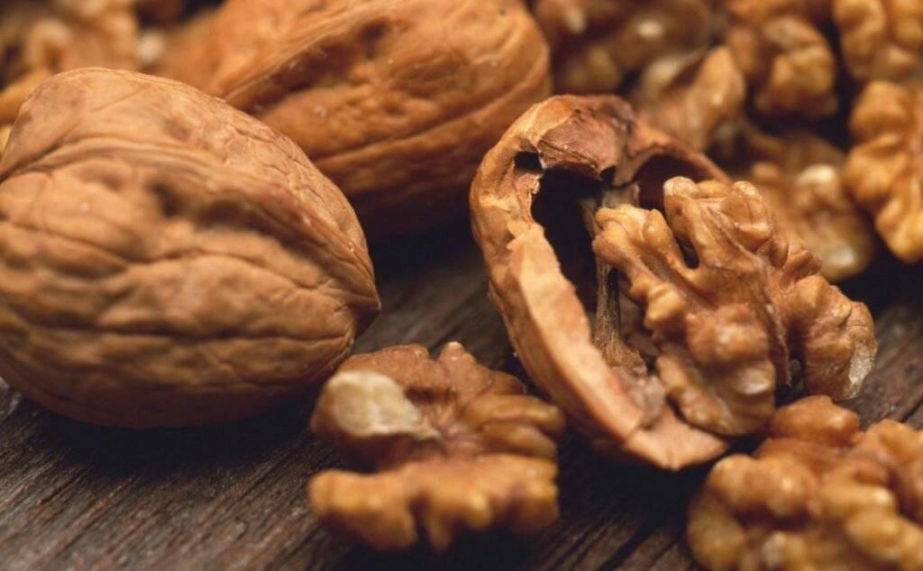 Бразильский орех: польза и вред, сколько есть, советы по выбору
