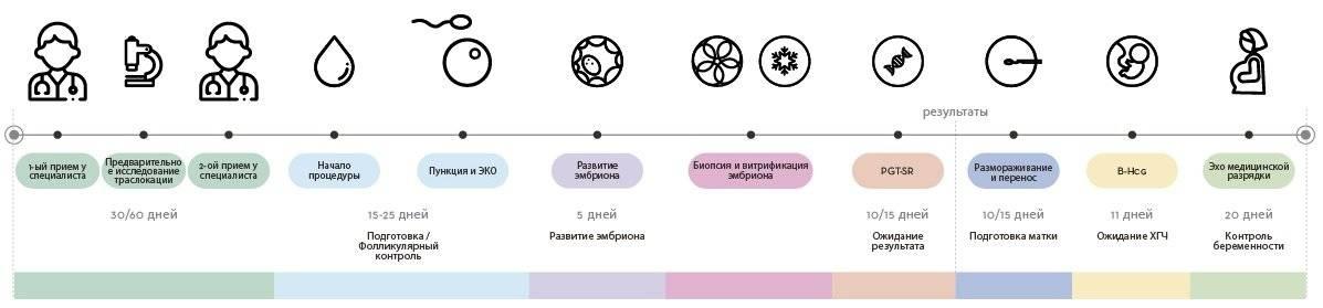 Эко с пгд (преимплантационная генетическая диагностика) –  в москве  пгд эмбриона цена   за рождение
