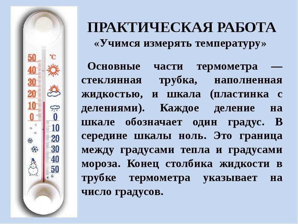 Как правильно измерить температуру новорожденному ребенку: способы устройства, показатели нормы