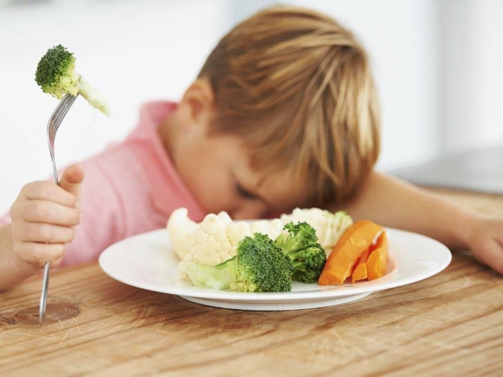 Ребенок не ест мясо что делать комаровский мясные блюда детям рецепты