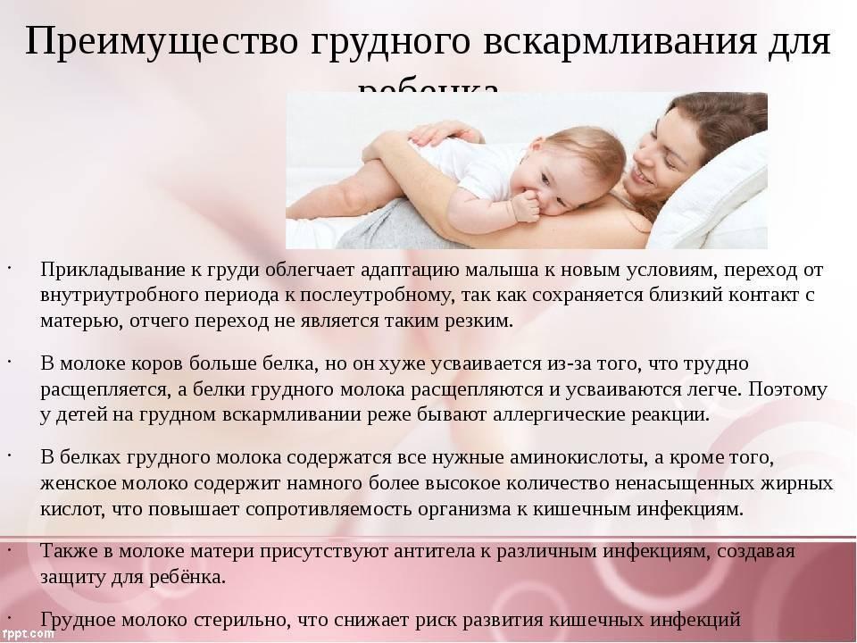Преимущества грудного вскармливания перед искусственным все положительные свойства материнского молока