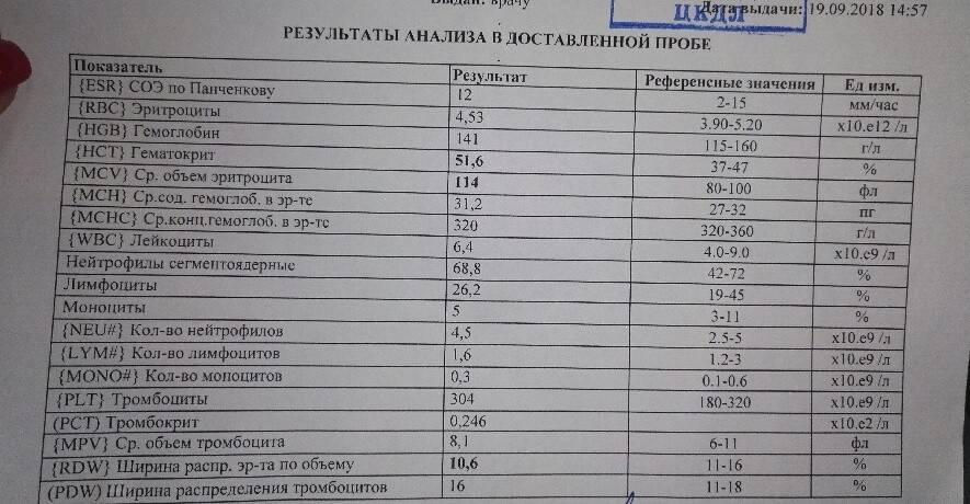Гематокрит пониженный и повышенный. причины отклонения от нормы :: syl.ru