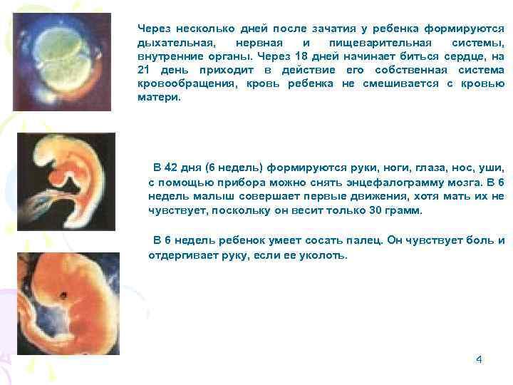 Беременность после замершей. когда можно беременеть после замершей беременности?