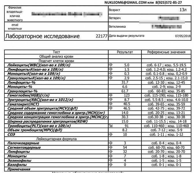 Ширина распределения эритроцитов (rdw) повышена