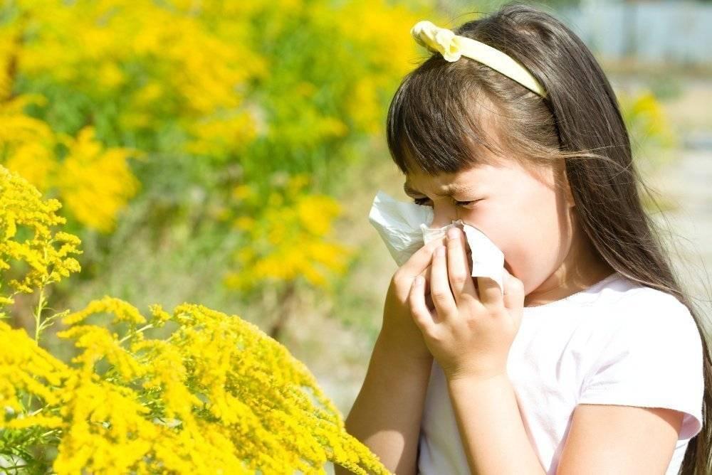 Аллергия на цветение у ребенка — как помочь детям разных возрастов?